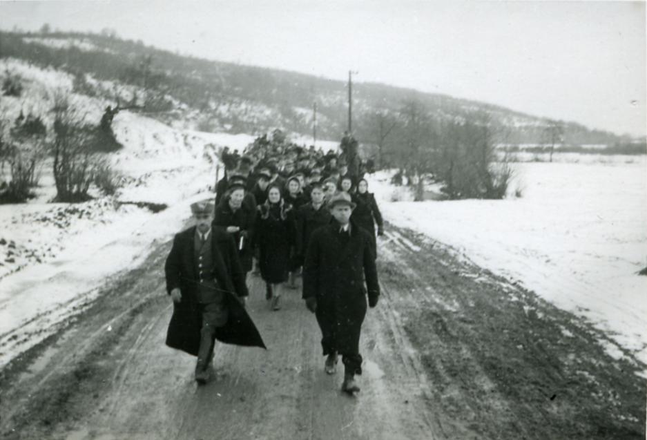Володимир Бірчак: евакуація Карпатської України